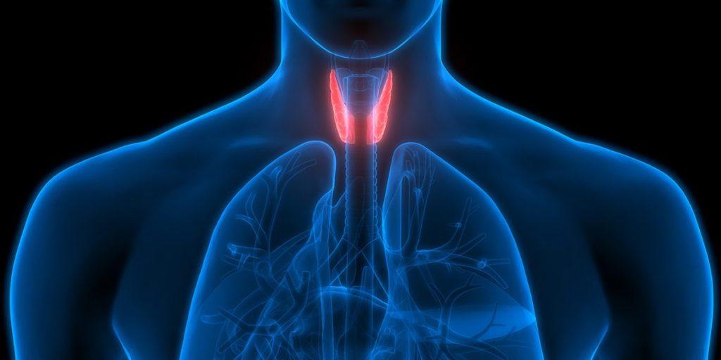 olife e tiroide